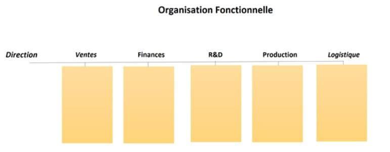 organisation fonctionnelle définition