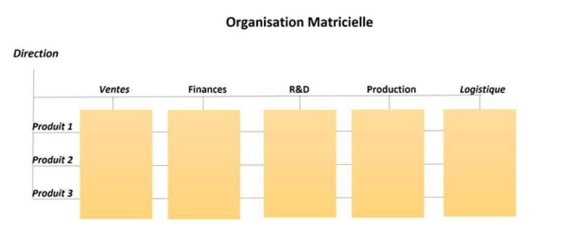 organisation matricielle définition