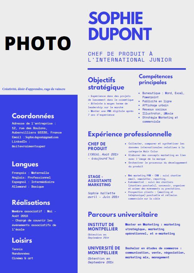 CV projet professionnel