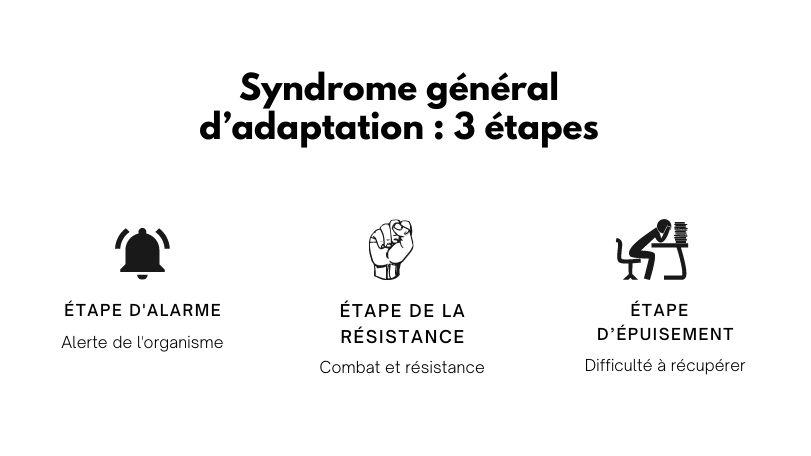 Syndrome général d'adaptation 3 étapes